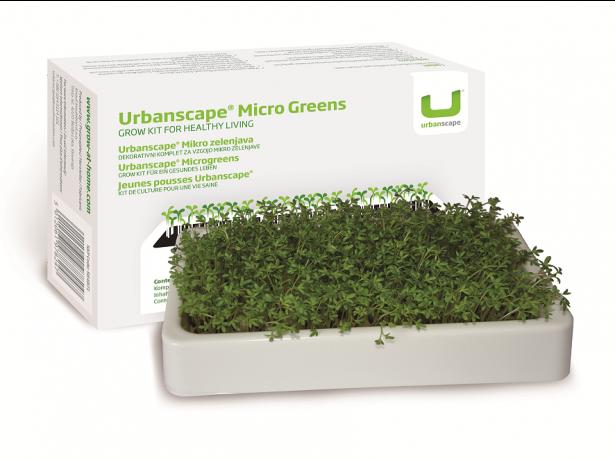 Mikro zelenjava - Vrtna kreša