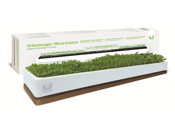 Decoration Kit Micro Greens (Large) - Oak