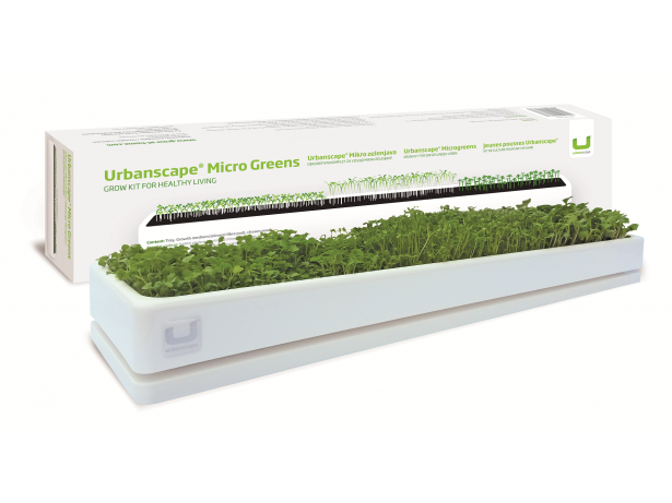 Decoration Kit Micro Greens (Large) - White
